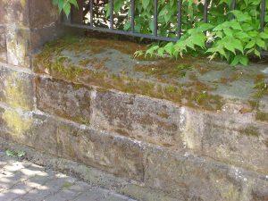Terrassen- und Steinreinigung detail-1